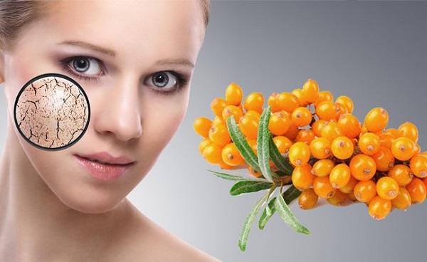 Облепиховое масло: лечебные свойства и противопоказания для лица