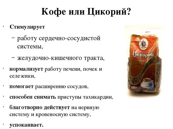Цикорий растворимый: полезные свойства