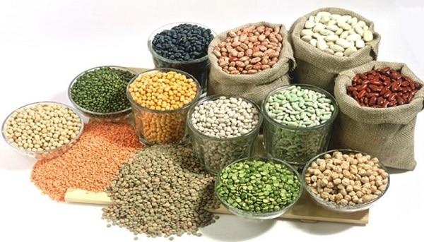 В каких продуктах содержится белок: бобовые